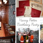 Harry Potter Party Collage