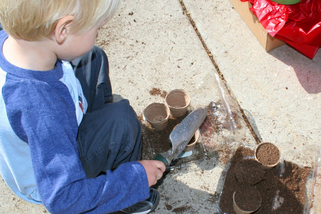 Little boy adding dirt to seed pots