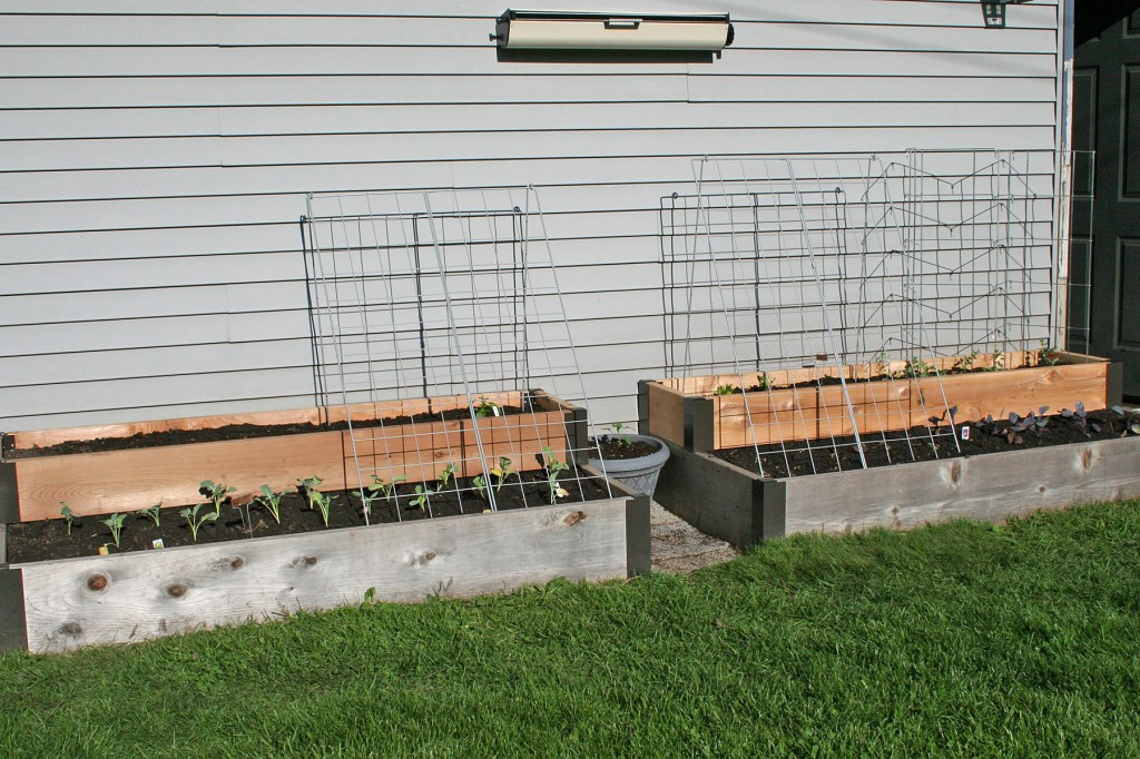 Two-level raised garden beds