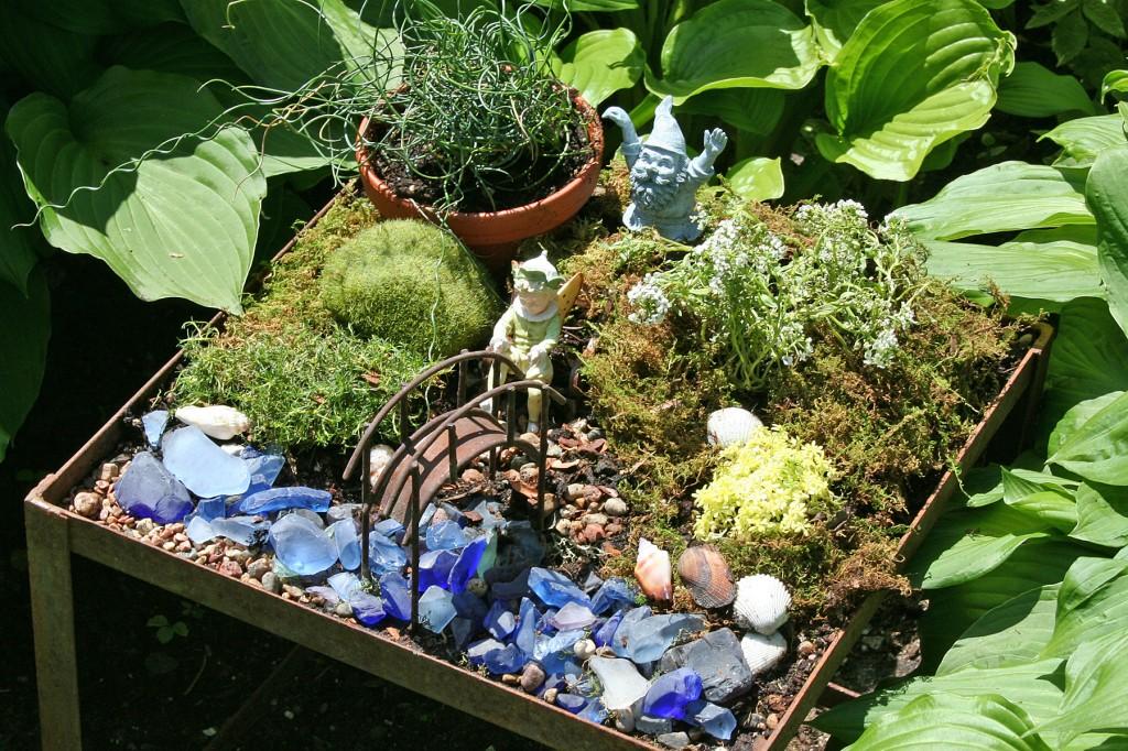 Noah's fairy garden