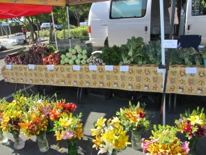 Finding my farmer's market home: Market in the Valley