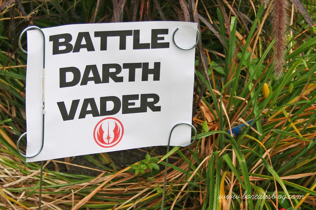 Battle Vader Sign