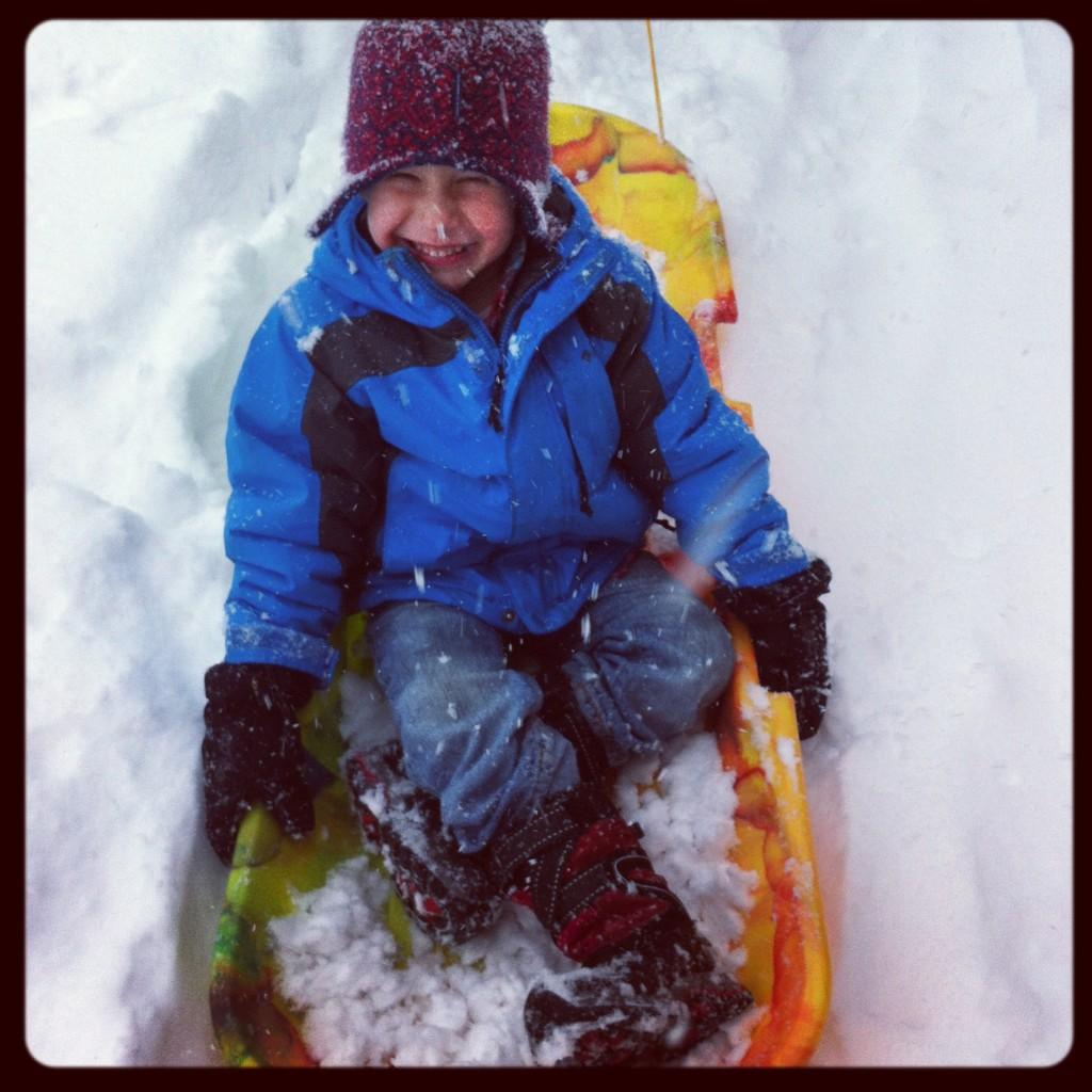 noah on sled