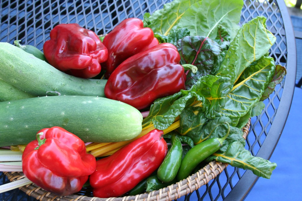 five ideas for urban vegetable gardening