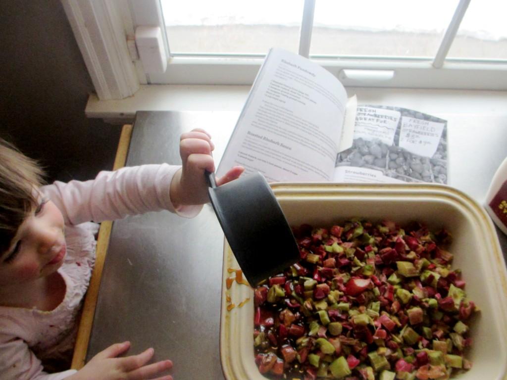Rhubarb Pandowdy recipe