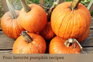 Four favorite pumpkin recipes