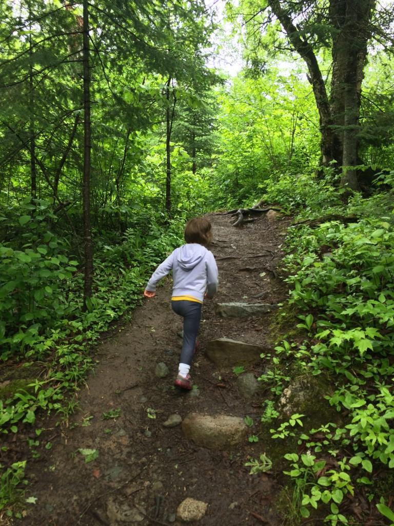 kawishiwi falls hiking trail