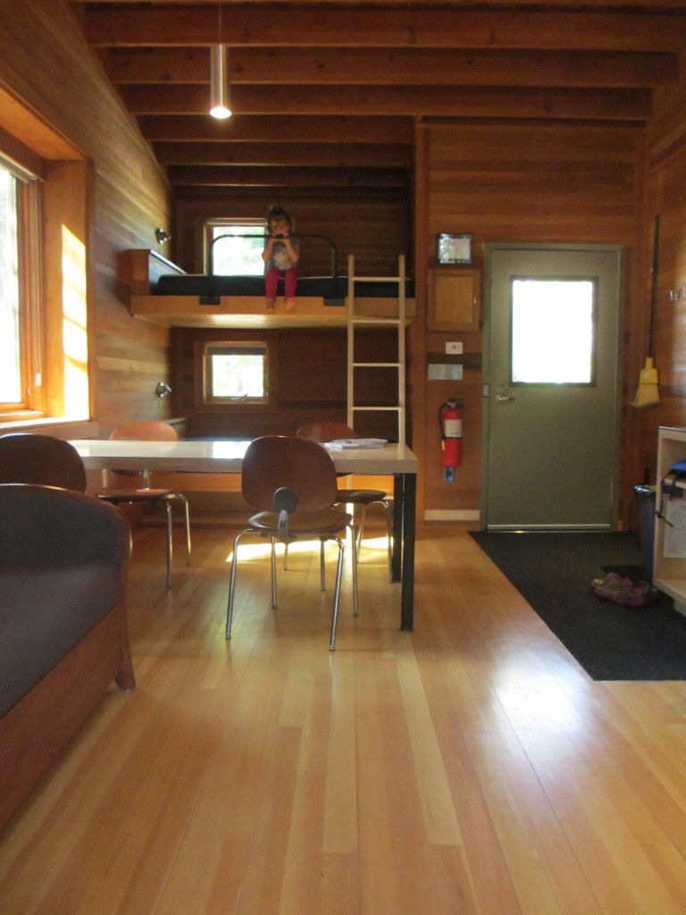 whitetail woods cabin interior